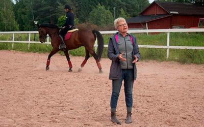 Ratsastajan ja hevosen koulutus